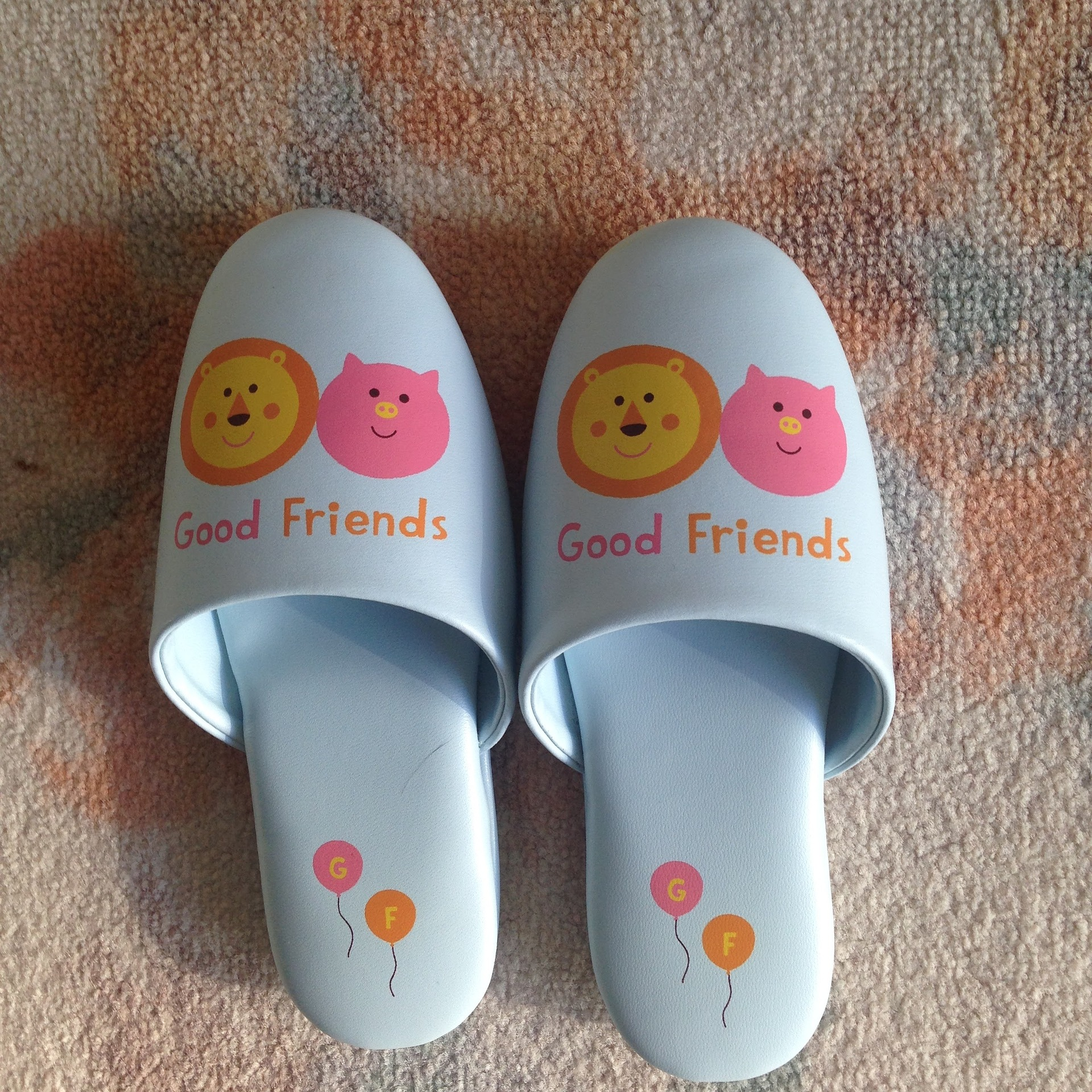 slippers-1432817_1920